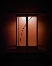 reedlight